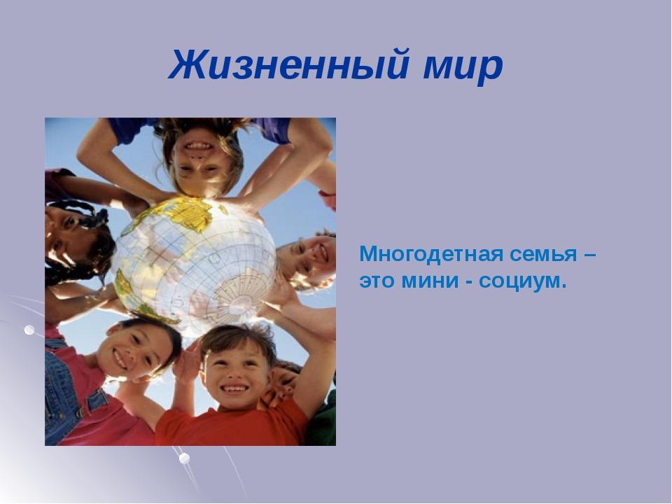 Жизненный мир Многодетная семья – это мини - социум.