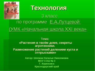 Технология 3 класс по программе Е.А.Лутцевой (УМК «Начальная школа ХХI века»