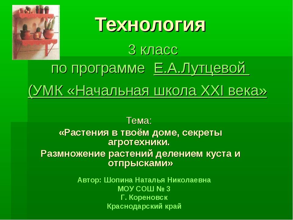 Технология 3 класс по программе Е.А.Лутцевой (УМК «Начальная школа ХХI века»...