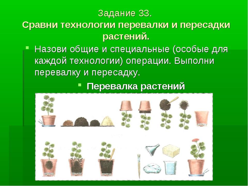 Задание 33. Сравни технологии перевалки и пересадки растений. Назови общие и...