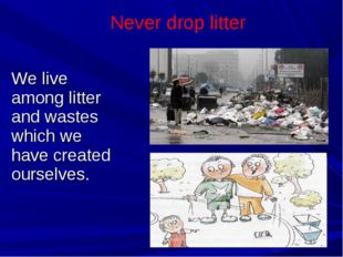 We live among litter and wastes which we have created ourselves. Never drop l