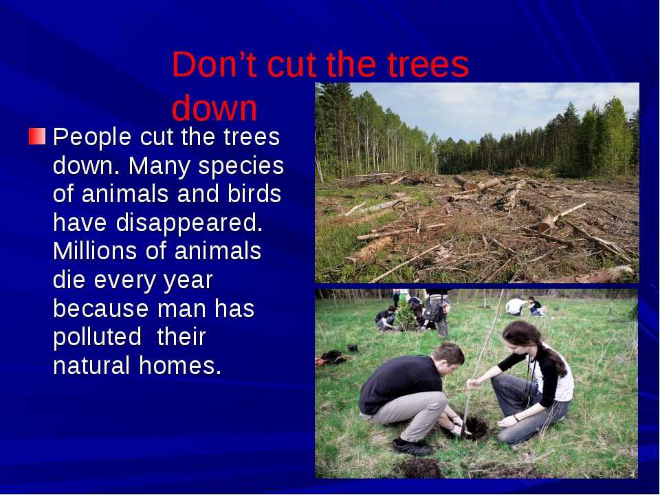 People cut the trees down. Many species of animals and birds have disappeared...