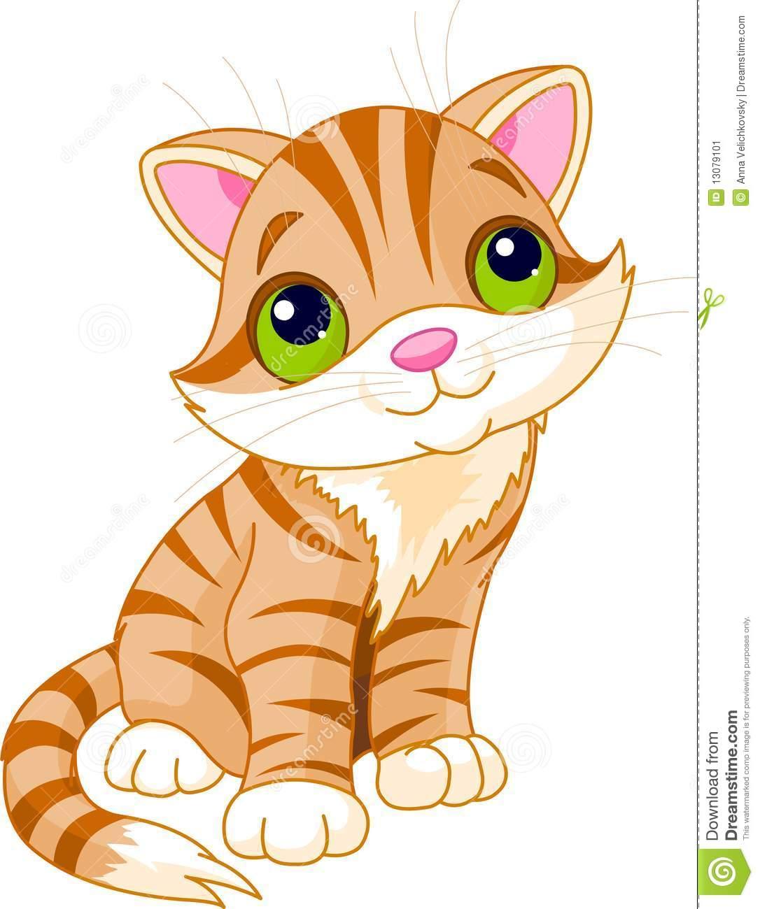 http://thumbs.dreamstime.com/z/very-cute-kitten-13079101.jpg