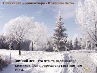 Зимний лес - это что-то необычайно красивое. Вся природа окутана зимним сном…