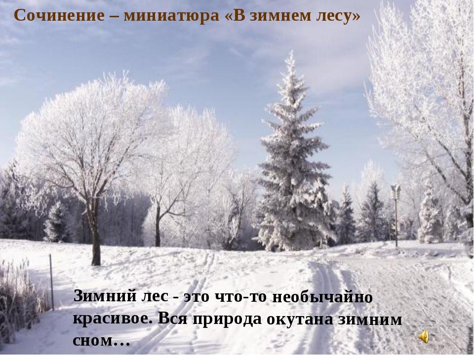 Зимний лес - это что-то необычайно красивое. Вся природа окутана зимним сном…...