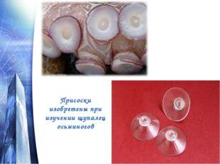 Присоски изобретены при изучении щупалец осьминогов