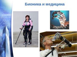 Бионика и медицина