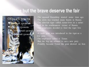 None but the brave deserve the fair -The unusual friendship started some tim