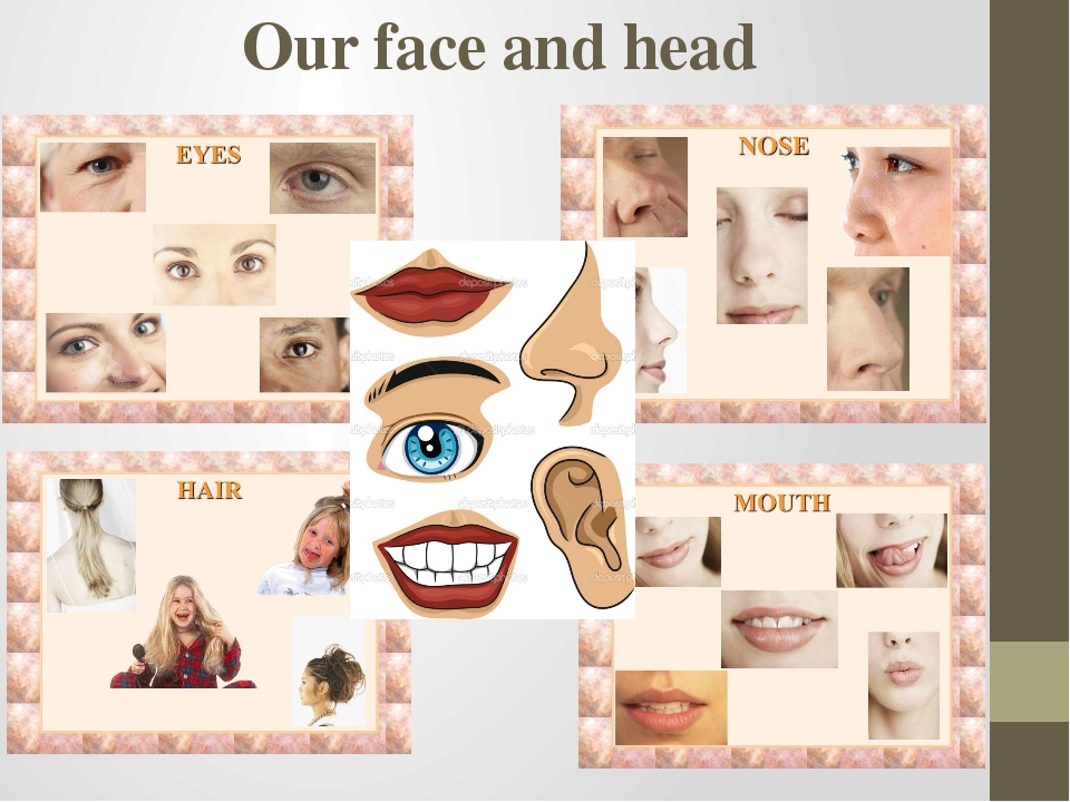Our face and head