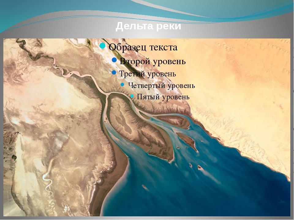 Дельта реки
