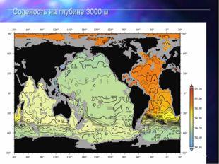 Соленость вод Мирового океана  Соленость на глубине 3000 м Оглавление Парамет