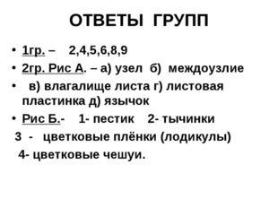 ОТВЕТЫ ГРУПП 1гр. – 2,4,5,6,8,9 2гр. Рис А. – а) узел б) междоузлие в) влагал