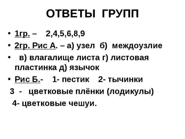 ОТВЕТЫ ГРУПП 1гр. – 2,4,5,6,8,9 2гр. Рис А. – а) узел б) междоузлие в) влагал...