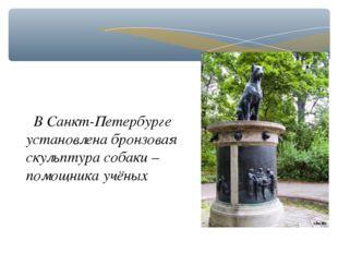 В Санкт-Петербурге установлена бронзовая скульптура собаки – помощника учёных