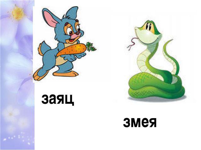 заяц змея