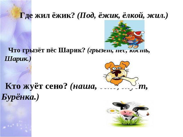Где жил ёжик? (Под, ёжик, ёлкой, жил.) Что грызёт пёс Шарик? (грызёт, пёс, ко...