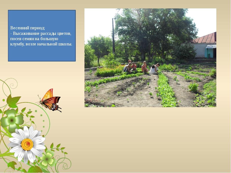 Весенний период: - Высаживание рассады цветов, посев семян на большую клумбу,...