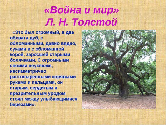 «Война и мир» Л. Н. Толстой «Это был огромный, в два обхвата дуб, с обломанны...