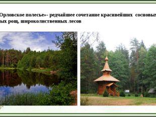 Парк «Орловское полесье»- редчайшее сочетание красивейших сосновых боров, бер