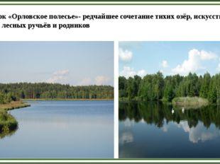 Парк «Орловское полесье»- редчайшее сочетание тихих озёр, искусственных пруд