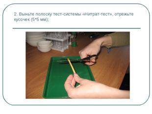 2. Выньте полоску тест-системы «Нитрат-тест», отрежьте кусочек (5*5 мм);