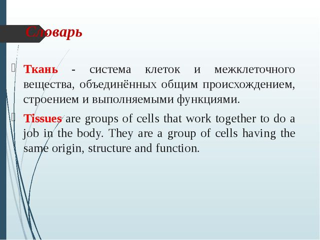 Словарь Ткань - система клеток и межклеточного вещества, объединённых общим п...