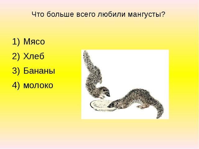 Что больше всего любили мангусты? Мясо Хлеб Бананы молоко