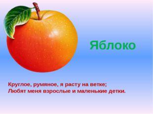 Яблоко Круглое, румяное, я расту на ветке; Любят меня взрослые и маленькие д