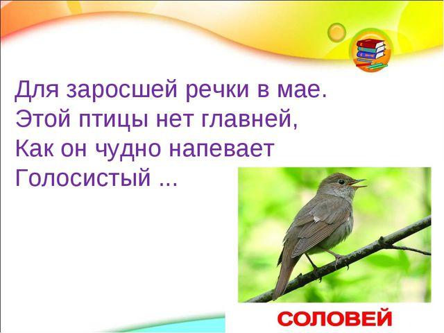 Для заросшей речки в мае. Этой птицы нет главней, Как он чудно напевает Голос...