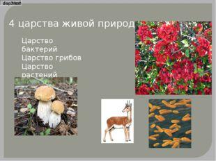 4 царства живой природы Царство бактерий Царство грибов Царство растений Царс