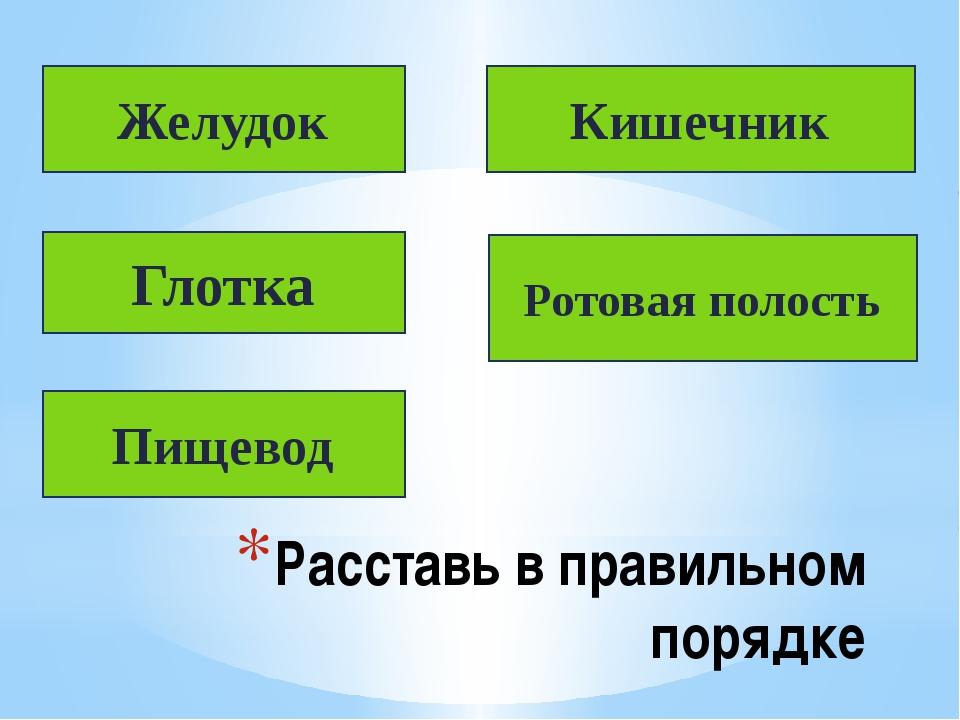 Расставь в правильном порядке Желудок Глотка Пищевод Кишечник Ротовая полость