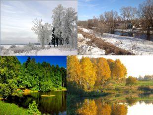 Для Московской области типичны четыре времени года, имеющие различную продолж