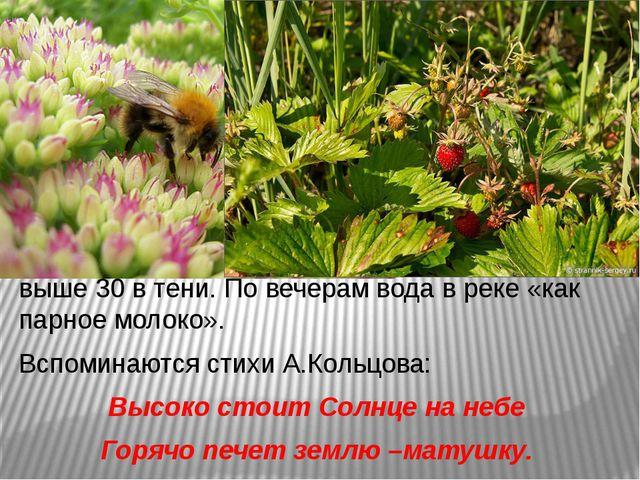 Яркими цветами пестреют луга, зреет земляника. Июль - самый теплый месяц, в с...