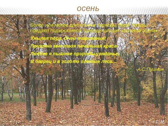 осень Более или менее длительные периоды такой погоды придают подмосковной пр...
