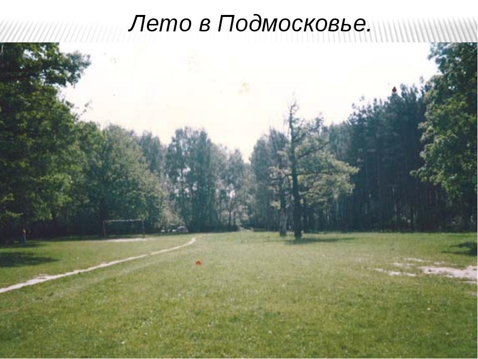 Лето в Подмосковье.
