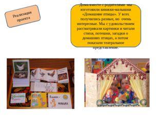 Реализация проекта Дома вместе с родителями мы изготовили книжки-малышки «Дом