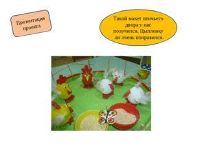 Презентация проекта Такой макет птичьего двора у нас получился. Цыпленку он о