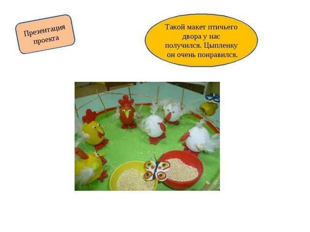 Презентация проекта Такой макет птичьего двора у нас получился. Цыпленку он о...