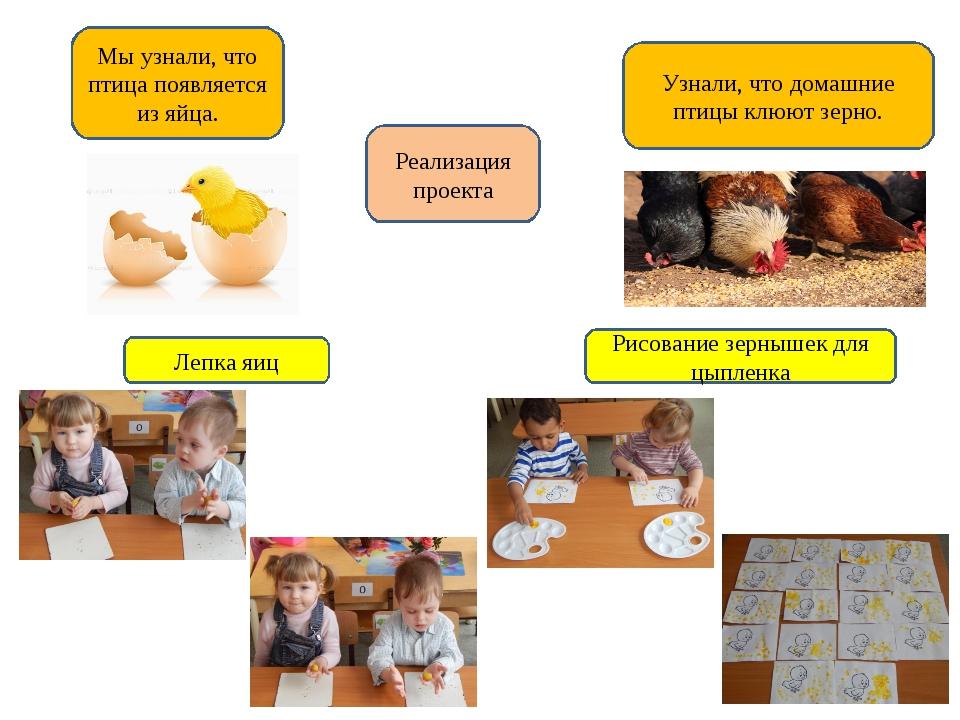 Реализация проекта Мы узнали, что птица появляется из яйца. Лепка яиц Узнали,...