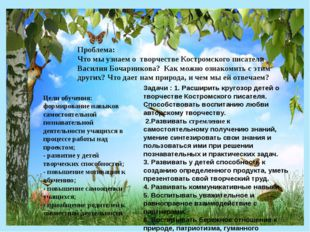 Проблема: Что мы узнаем о творчестве Костромского писателя Василия Бочарников