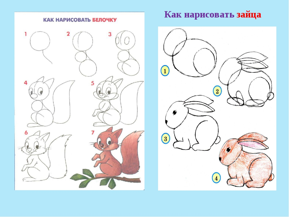 Как нарисовать зайчика по схеме