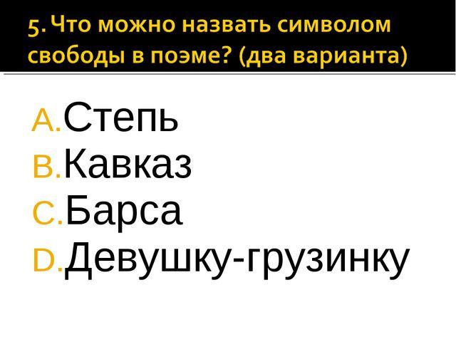 Степь Кавказ Барса Девушку-грузинку