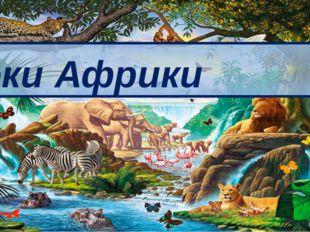Реки Африки 8 класс