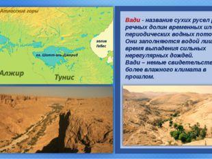 Вади - название сухих русел рек и речных долин временных или периодических в