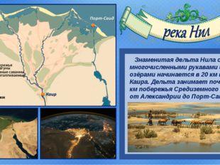 Знаменитая дельта Нила с многочисленными рукавами и озёрами начинается в 20