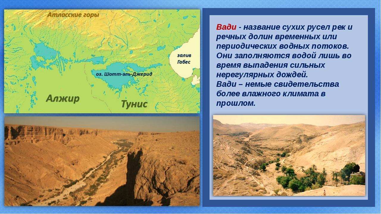 Вади - название сухих русел рек и речных долин временных или периодических в...