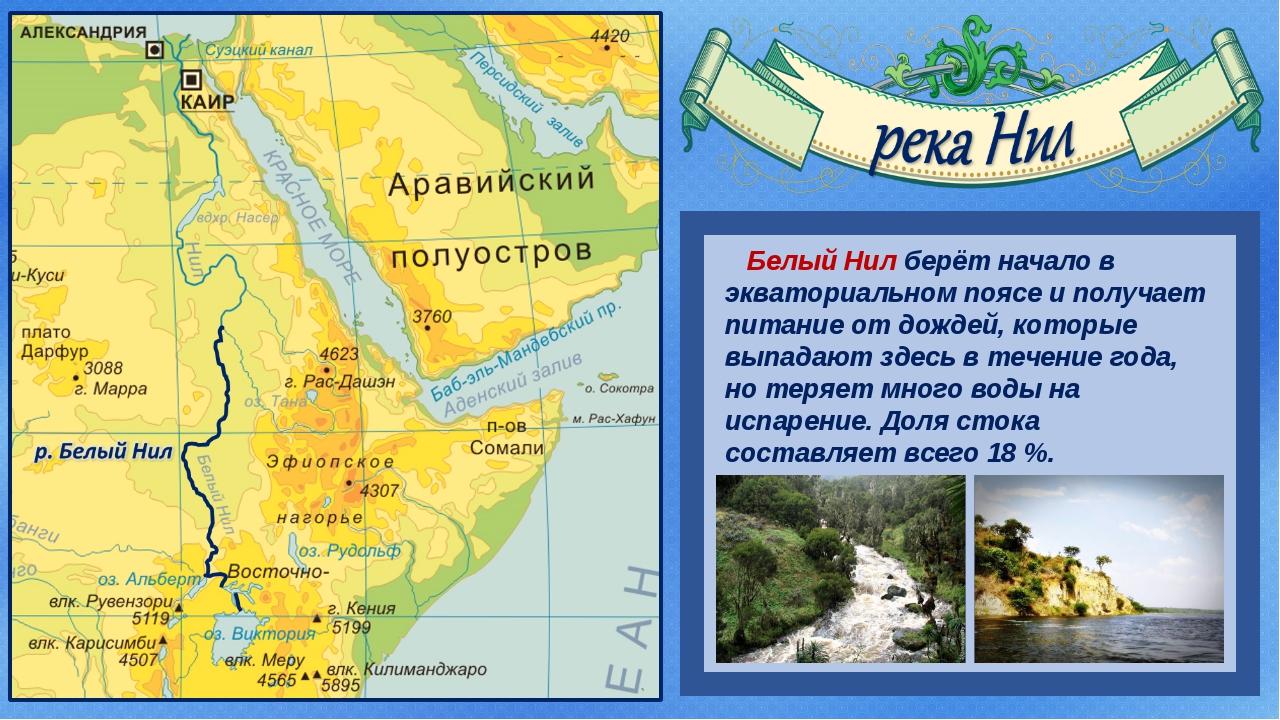 Белый Нил берёт начало в экваториальном поясе и получает питание от дождей,...
