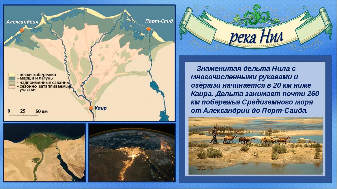 Знаменитая дельта Нила с многочисленными рукавами и озёрами начинается в 20...
