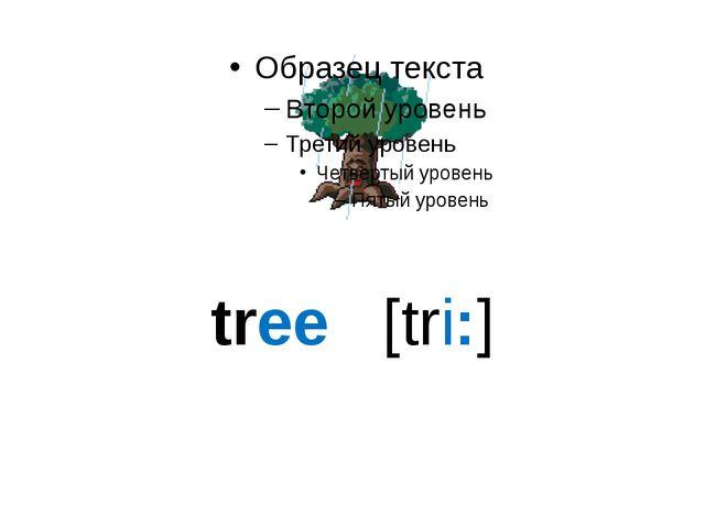 tree [tri:]