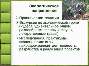 Экологическое направление Практические занятия Экскурсии по экологической тро